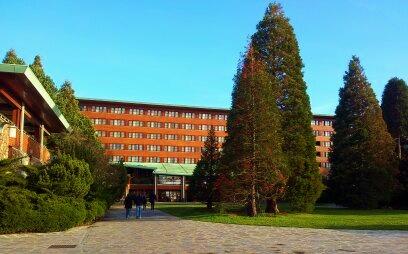 hotel disney sequoia lodge